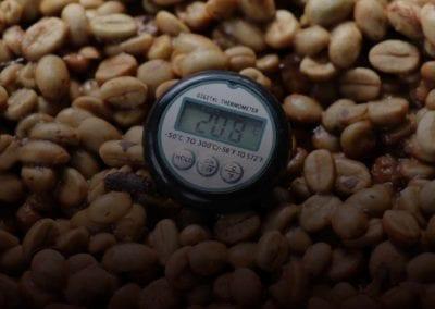 2016 Belgravia Fermentation Experiments