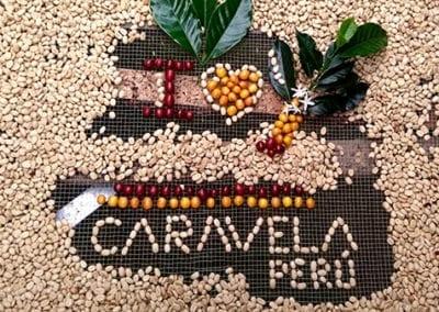 Peru, an Unpolished Diamond in Coffee Production